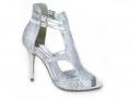 AB2197-618 Silver